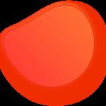 sftck-orimg01